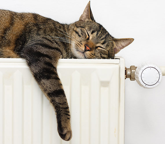 Central Heating Boiler Service